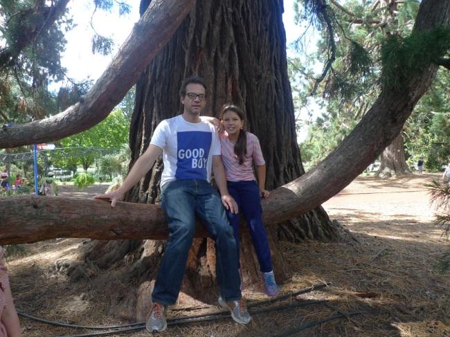 Tree trunk portrait