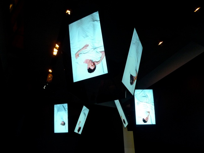 Video Installation of 30 sleeping artists, suspended from the ceiling like hanging bats