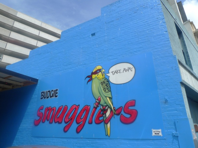 Budgie Smugglers