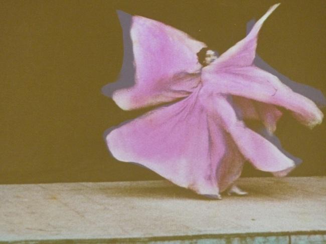 Auguste Lumiere, 'Danse Serpentine'